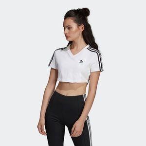 Adidas Original Women's Adicolor Cropped T-Shirt